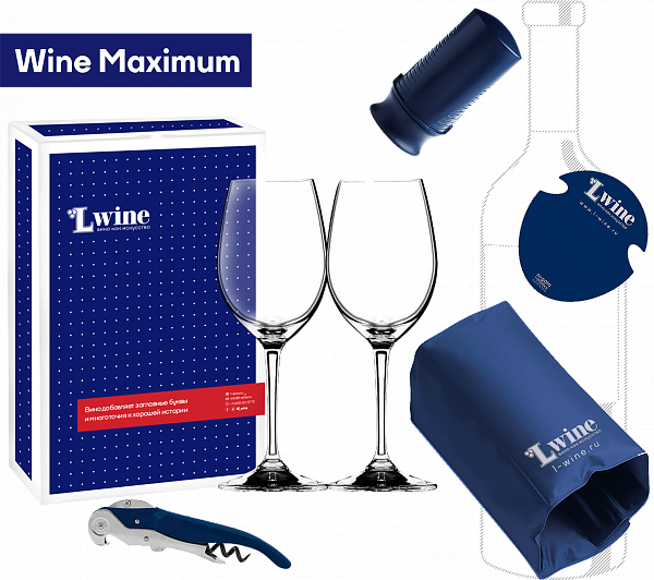 Wine Maximum wine accessories set
